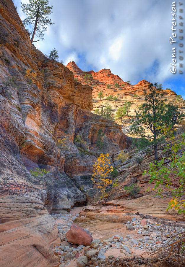 Clear Creek Zion National Park UT - www.gpphotos.com/Blog - Glenn Peterson Photography