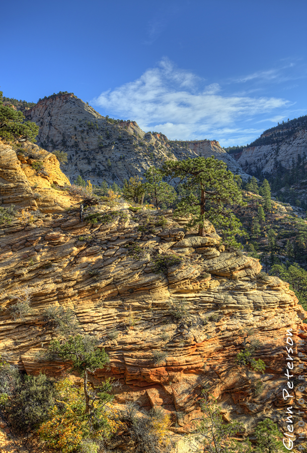 Observation Point Zion National Park UT - www.gpphotos.com/Blog - Glenn Peterson Photography